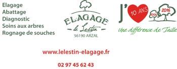 Elagage Le Lestin