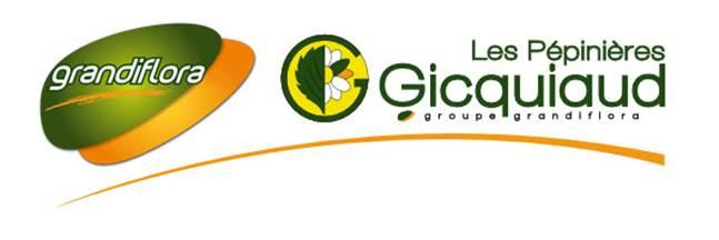 Gicquiaud